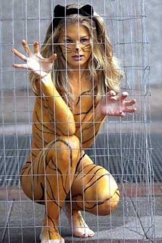 2010 год - год тигра , поэтому предлагаю вашему вниманию немного красивого
