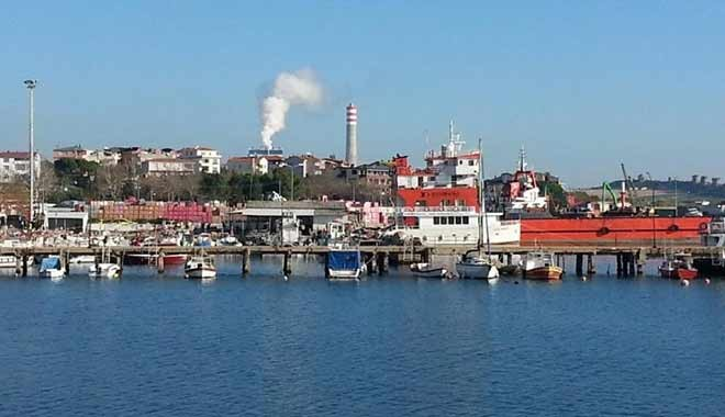 Çanakkale'ye termik santrale Danıştay'dan veto