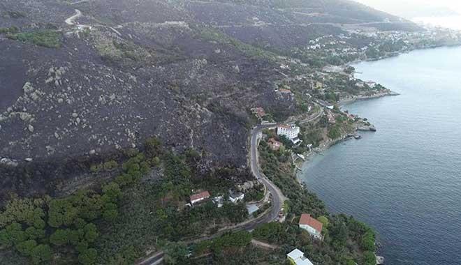 Ciğerlerimiz yandı, 80 hektar orman kül oldu