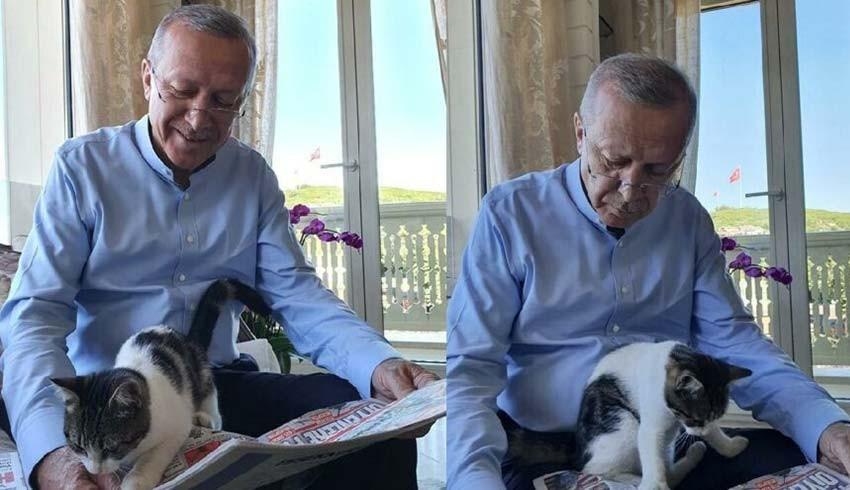 Cumhurbaşkanı Erdoğan hangi gazete okuyor?