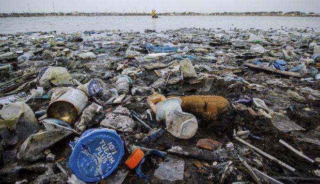 Karaya vuran balinanın midesinden 100 kilogram çöp çıktı: Halat, paket bandı, poşet ve plastik bardak