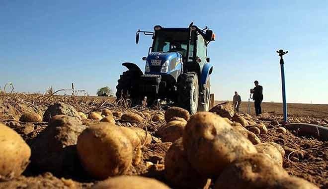 Zeybekci açıkladı: Soğan ve patates ithalatına izin verilecek