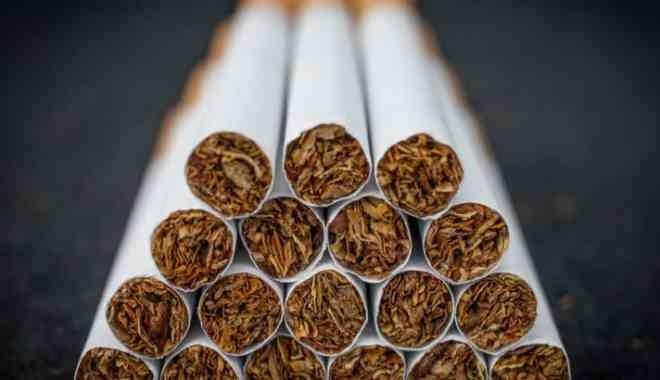 Tütün kartellerini sevindiren yasa